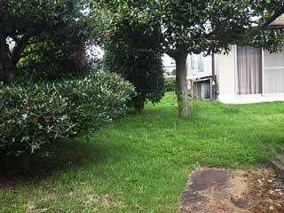 樹木の剪定、芝生の刈込、草とりetc・・・ 庭がある以上は避けて通ることはできません。庭木1本の剪定から承ります。害虫への消毒駆除もすぐにお伺いします。何なりとお申し付けください。